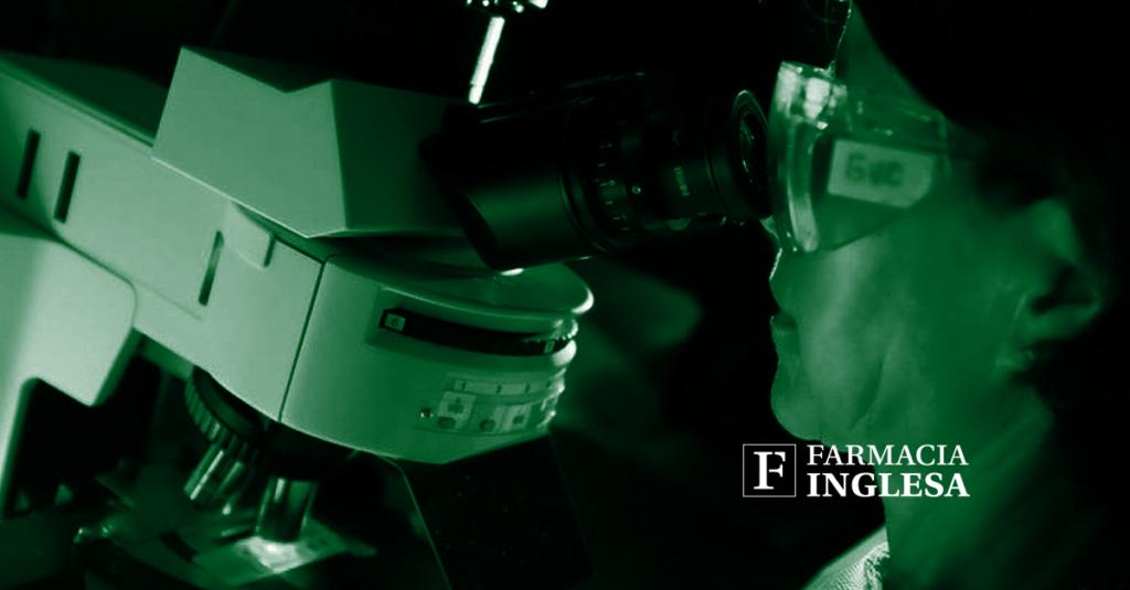Científicos logran ver en directo y en 3D cómo trabajan las proteínas de las células.